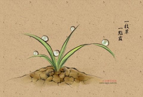 台灣俚語:一枝草,一點露