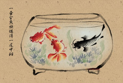 台湾俚语:一壶金鱼袂堪得一尾中斑
