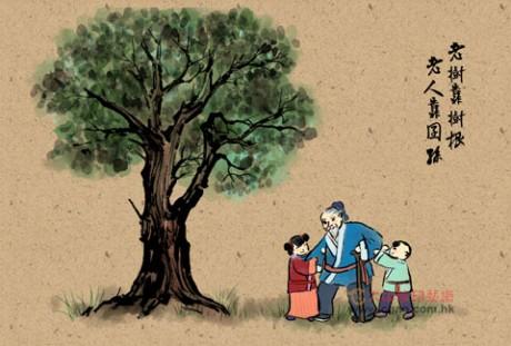 老树靠树根,老人靠囝孙