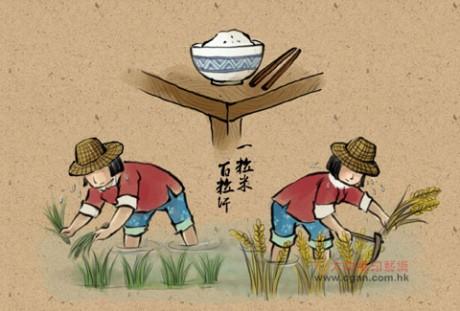 一粒米,百粒汗