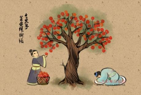 食果子,着爱拜树头