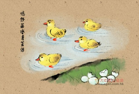鸭仔落水身着浮